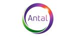 Antal International Network