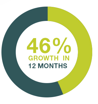 46% growth in 12 months
