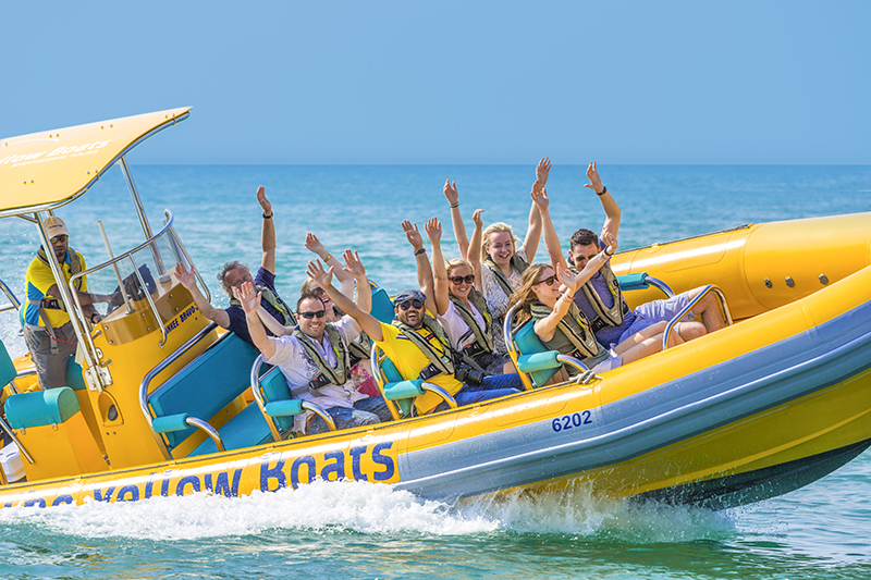 The Yellow Boats Franchise