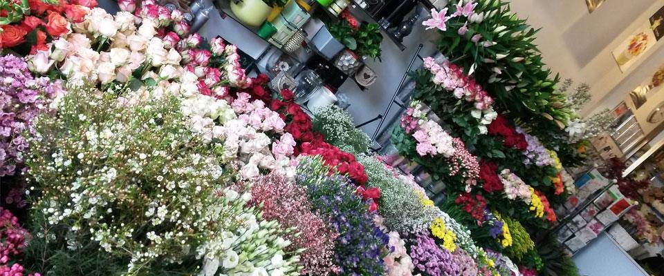 Florist Franchises